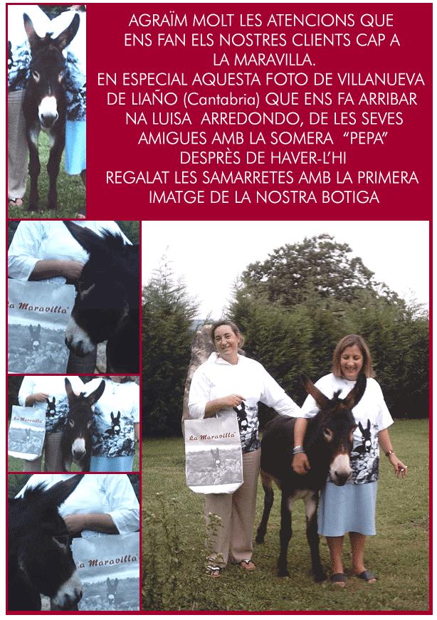 La Maravilla News 2006